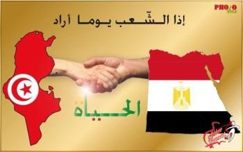عاجل .. الاعلام التونسى : الفيفا يعلن تأهل تونس لكأس العالم ويطيح بالكاميرن