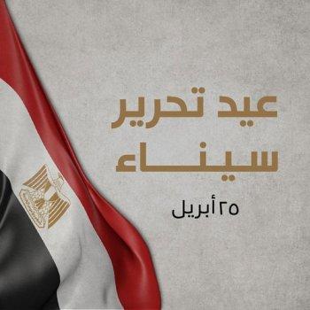 تعليق  السيسي فى ذكرى تحرير سيناء الـ 38